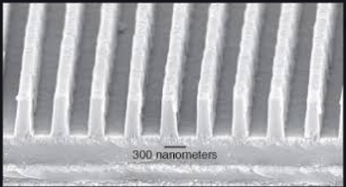 Micrograph of Dielectric Grating Surface