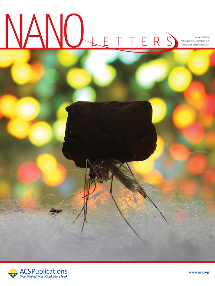 Photo of alternate cover of Nano Letters showing a gold aerogel sample on the back of a mosquito