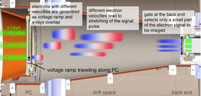 Graphic Showing the DINO Concept